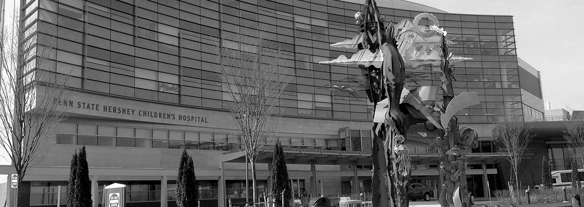 Hershey Childrens Hospital