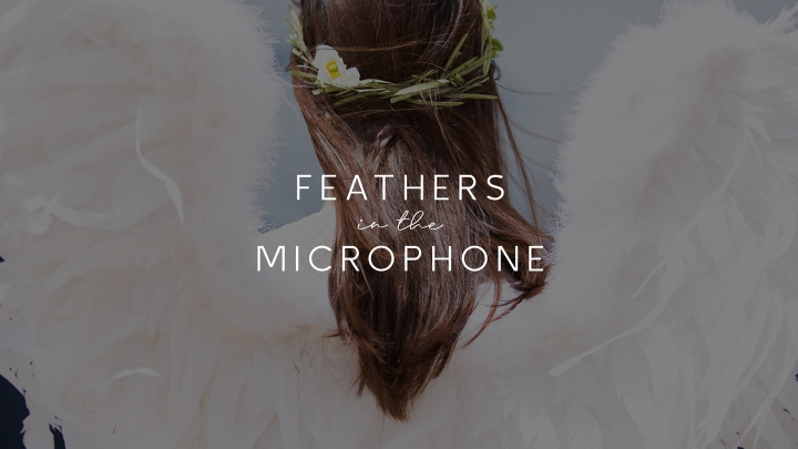 Feathers in the Microphone